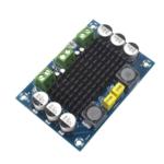 Amplificador Audio Mono Tpa3116 100w Dc12-26v – TPA3116