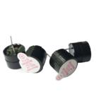 Buzzer Pasivo 3-12volt 12mm