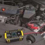 Cargador Inteligente De Batería 12v Y 24v